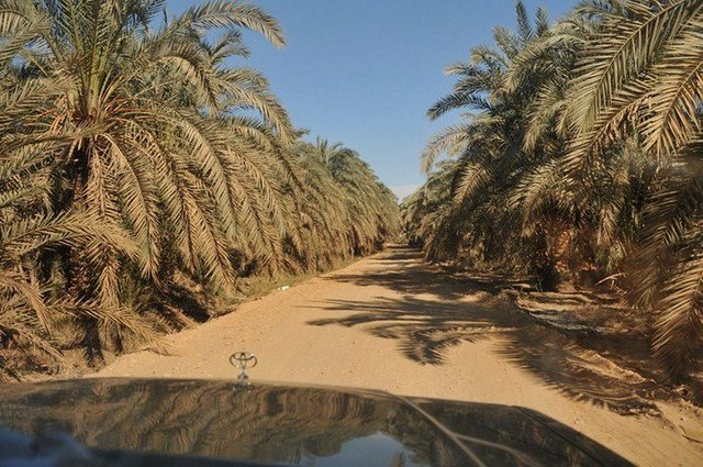 EGP_7205-800x600-700x500-640x480 dans e). Désert du Sahara